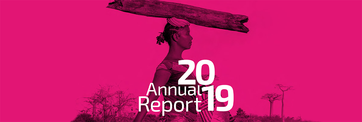 Baobab Group's 2019 Annual Report